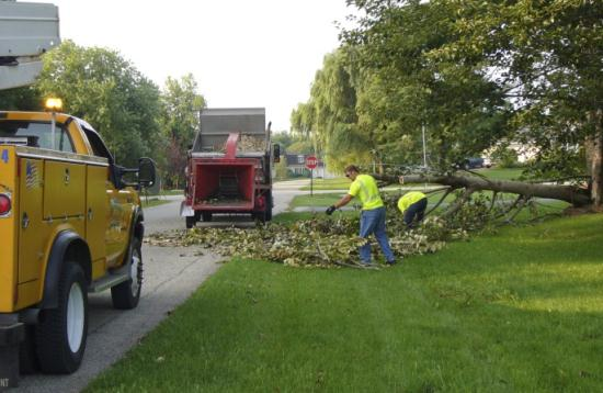Workers cleaning up the damaged trees with 2 trucks to haul the brush away